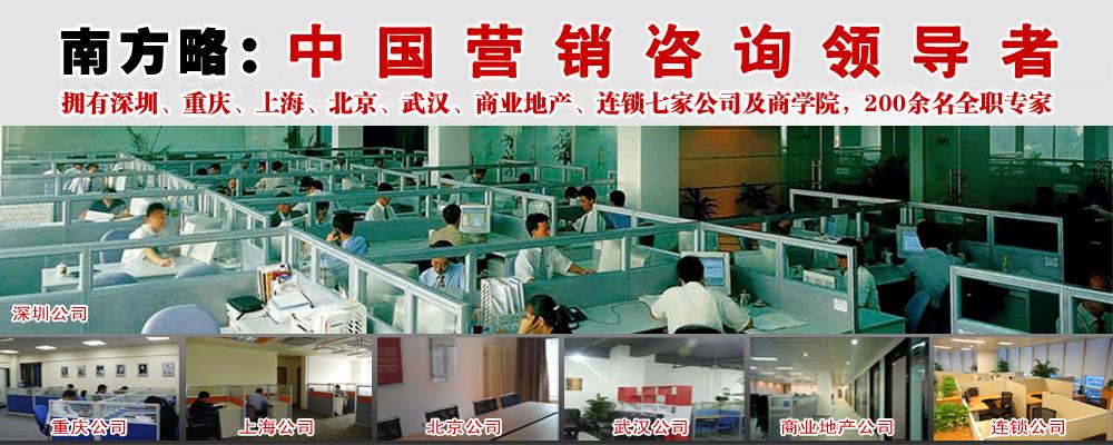 南方略 中国咨询行业领导者.png