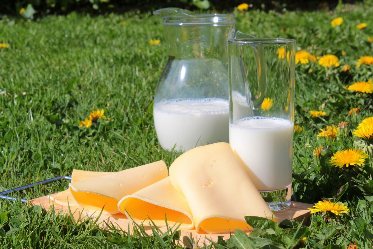 milk-1385548_1920.jpg