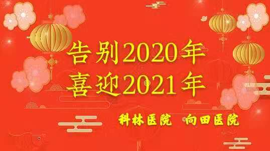 图1.告别2020喜迎2021年.jpg