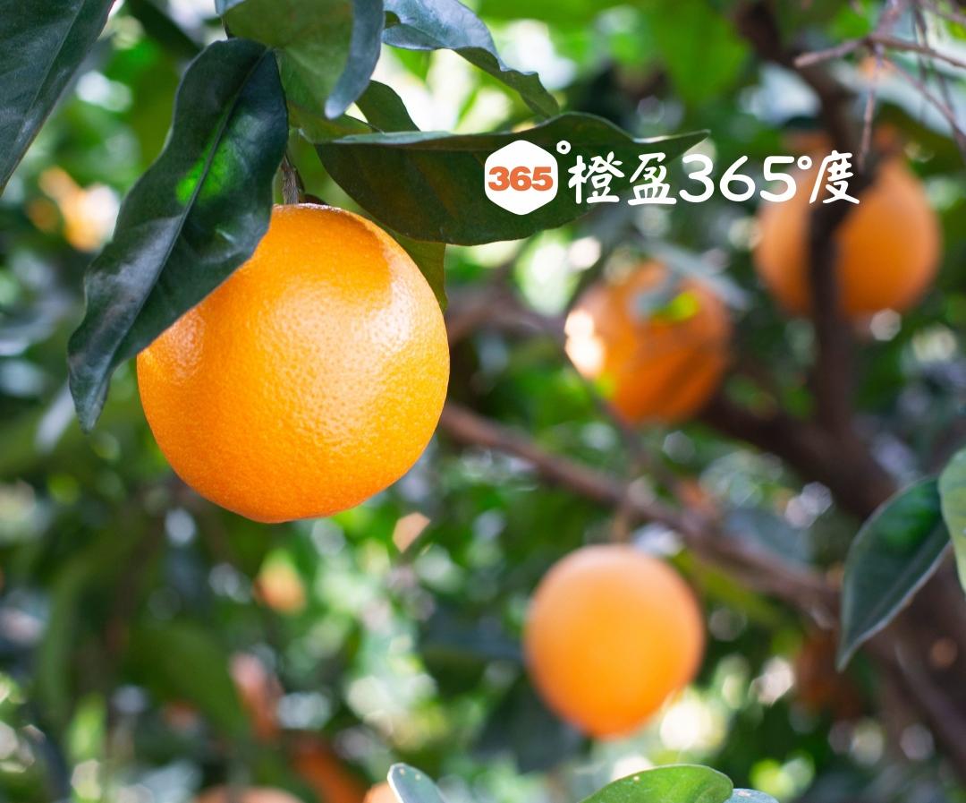 DSC_470160_看图王(1).jpg