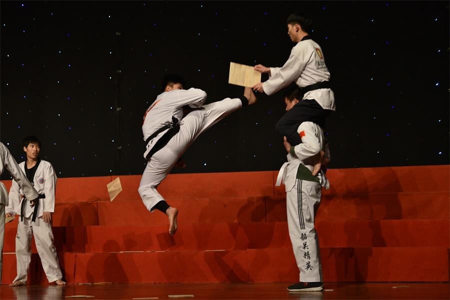 跆拳道《出战》1。.JPG