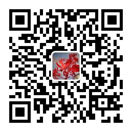 43e96f9770e1f8fffcf12dcf7d29498.jpg