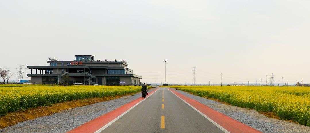 2021年4月2日拍摄示范中心道路~1.jpg