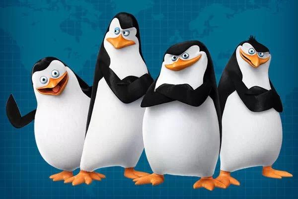 企鹅可爱.jpg