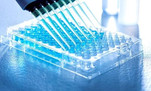 covid19-antibody-testing-kits.jpg