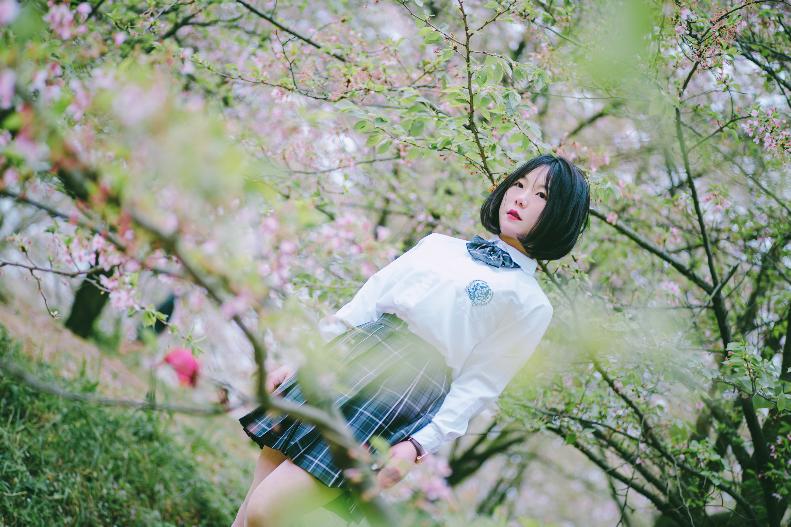 樱花03.png