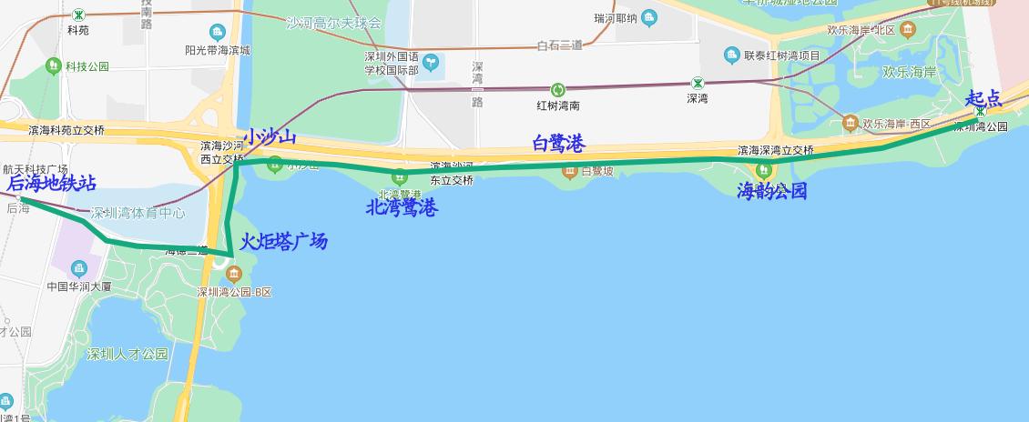 深圳湾 (3).png
