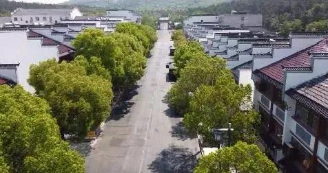 奖励200万!阜宁这个村被省里看中了...