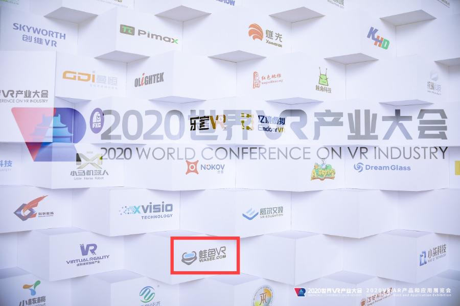 蛙色VR参加2020世界VR产业大会云峰会